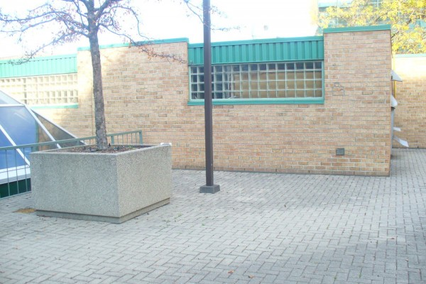 77 Avenue Road (9)